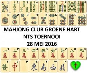 NMB_NTS_Groene_Hart_MJT2016